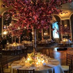 #tablescape #cherryblossom trees as centerpieces #waldorfnyc #rennyandreed