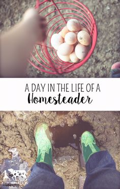 A Day in the Life of a Homesteading Family