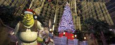 Shrek at the Gaylord Texan Resort during Christmas