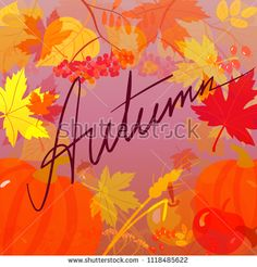 Handwritten word Autumn on the background with autumnal leaves. Vector illustration