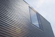Datcha house 4 - Vossenpels / Plant je Vlag, Lent   Kavelwoning.nl
