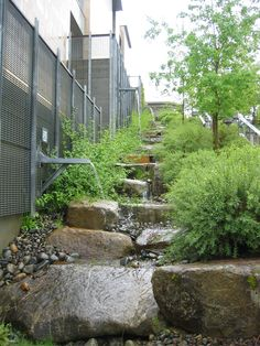 drainage system (NDS) in action at Kitsap Admin Building Image showing a Natural Drainage System (NDS) applied to a recent development.Image showing a Natural Drainage System (NDS) applied to a recent development. Urban Landscape, Landscape Design, Garden Design, Rain Garden, Water Garden, Water Management, Home Design, Water Features, Landscape Architecture