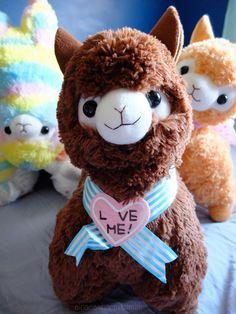 ❤ Blippo.com Kawaii Shop ❤ Kawaii Alpaca, Pusheen Plush, Laurdiy, Cute Llama, Llama Alpaca, Cute Plush, Kawaii Shop, Cute Toys, Soft Dolls