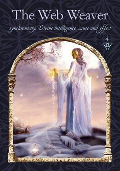 The Web Weaver - WISDOM OF THE HIDDEN REALMS - by Colette Baron-Reid & Jena DellaGrottaglia  http://colettebaronreid.com/the-daily-oracle-cards-wisdom-pick/