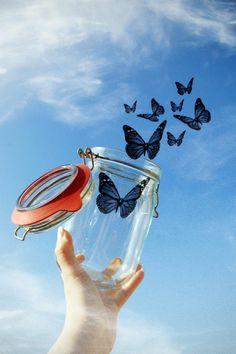 fly away, sweet butterflies...