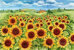 Sunflower Field by Paul Brent