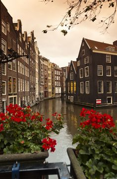 Enjoy your vacation in Holland and Belgium on a Rick Steves tour! You'll experience Amsterdam, Bruges, and more! Amsterdam Trip, Amsterdam Canals, Places Around The World, Travel Around The World, Around The Worlds, Places To Travel, Places To Visit, Holland Netherlands, Travel Netherlands