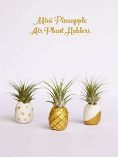 Mini pineapple air plant holders DIY Mini Pineapple Air Plant Holders You'll need White polymer clay Bamboo skewer Air plants (Tillandsia 'Ionatha') Gold paint Diy Clay, Clay Crafts, Pineapple Ideas, Deco Nature, Deco Floral, Cactus Y Suculentas, Crafty Craft, Crafting, Urban Gardening