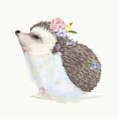 Illustration of a baby hedgehog | free image by rawpixel.com