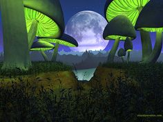 3d, alien, bright, colorful, fantasy, fiction, forest, fungus, glowing, grass, landscape, light, lunar, moon, mushroom, planet, plants, rend...