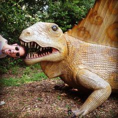 Photobombing a dinosaur.