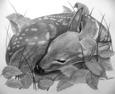 Baby Art Drawing Tattoos 29 Ideas For 2019 Fawn Tattoo, Baby Deer Tattoo, Fox Tattoos, Tree Tattoos, Hand Tattoos, Sleeve Tattoos, Sleeping Drawing, Baby Drawing, Deer Illustration