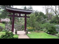 鈴 Chillout Meditation Singing Bowl Klangschalen Yoga Relaxing - YouTube