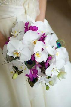 Ce sont bien des fleurs de tiarés? J'adhère!