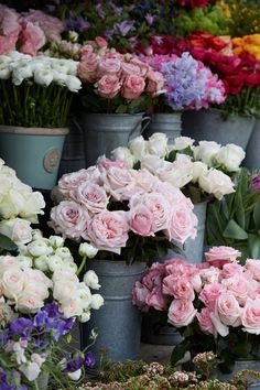 A quick visit to the flower market.