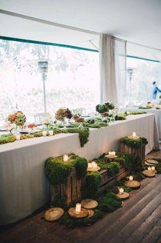 Décoration de table, mousse, lumière, bois. Ambiance végétale