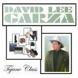 awesome LATIN MUSIC - Album - $6.99 -  Tejano Class