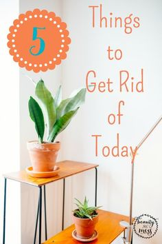 5 Things to get rid of TODAY!  Feeling overcrowded by stuff doesn't make for a calm, productive day around here.  I love the feeling of letting stuff go.  Here are 5 things around your home that you can let go of today!