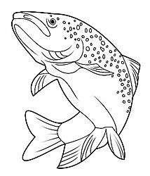Free for personal use Trout Fish Drawing of your choice Fish Drawings, Animal Drawings, Salmon Drawing, Fish Wood Carving, Coloring Books, Coloring Pages, Fish Quilt, Fish Patterns, Arte Horror