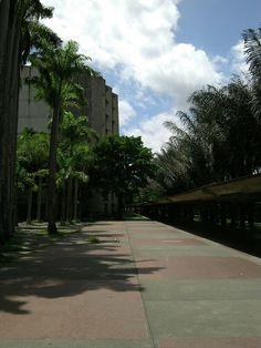 Edificio de FACES #UCV