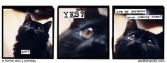 A softer world website- full of great comic photostrips