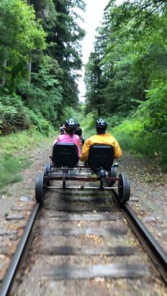 Rail biking in Northern California Redwoods Fun Places To Go, Beautiful Places To Travel, Vacation Places, Vacation Spots, Greece Vacation, Vacation Resorts, Northern California Travel, Cool Places In California, Big Sur California