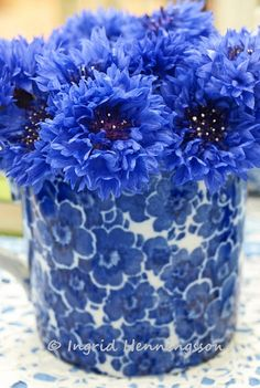 Blue Cornflowers in a Vintage Floral Cup. Styling and photography © Ingrid Henningsson/Of Spring and Summer. http://ofspringandsummer.blogspot.co.uk/