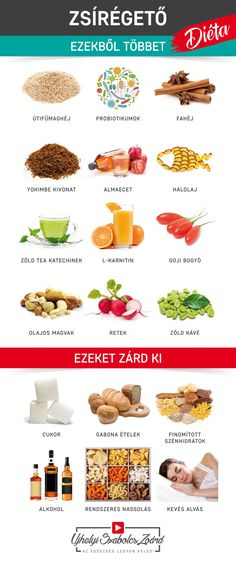 Zard, Omega 3, Pcos, Health, Diet, Health Care, Healthy, Polycystic Ovary Syndrome, Salud