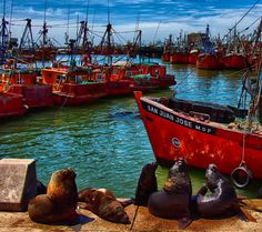 Mar del Plata Largest Countries, Countries Of The World, Santa Fee, Andes Mountains, The Places Youll Go, South America, Places To Travel, Pacific Northwest, Boat