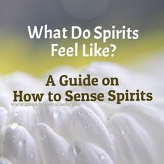 Ever wondered what Spirits feel like? Learn how to feel Spirits and the different sensations they produce within you.