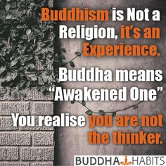 """Buddhism is not a religion, it's an experience. Buddha means """"Awakened One"""". You've realised you are not the thinker. You are able to turn off your mind. Silence your thoughts. We all have this capability. Watch your mind. Listen for your next thought. Feel the body. #buddhahabits"""