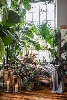 loved by www.online Wild at Home: Hilton Carter Book Giveaway! Botanical Interior, Interior Plants, Interior And Exterior, Room With Plants, House Plants Decor, Plant Rooms, Jungle Room, Green Rooms, Aesthetic Rooms