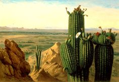 Henry_Cheever_Pratt_-_View_from_Maricopa_Mountain_near_the_Rio_Gila_-_1855