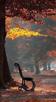 I love the start of autumn