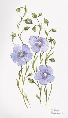 Watercolor sketches by Tanya Severianova, via Behance