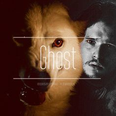 A Game of Thrones Ghost via Tumblr.com
