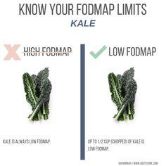 kale Top 15 Low-FODMAP High-Fiber Foods list agutsygirl.com #lowfodmap #sibo #highfiber #fodmaps