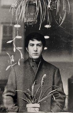 Dustin Hoffman ~ The Graduate