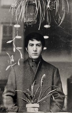 Dustin Hoffman ~ The Graduate (1967)