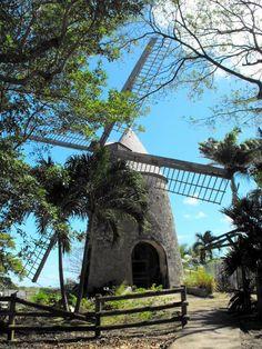 Guadeloupe, moulin à la rhumerie Damoiseau