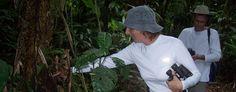 Rainforest Eco Adventures | Playa Nicuesa Rainforest Lodge