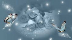 Whatever Is True, Grieving Mother, Child Loss, Butterfly Gold, To My Mother, Butterfly Wallpaper, Move Mountains, Green Backgrounds, White Roses