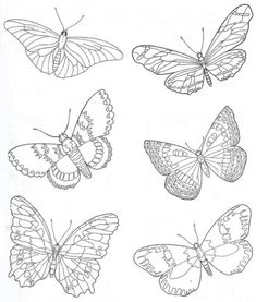 Бабочки. Шаблоны. Трафареты.