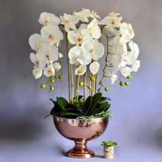 Large selection of Artificial Flowers & Plants. Choose from a range of Artificial Flowers & Plants. Faux Flowers, Artificial Orchids, and Silk Flowers. Artificial Flowers And Plants, Artificial Flower Arrangements, Artificial Silk Flowers, White Orchids, Faux Flowers, Mother Nature, Glass Vase, Copper, Crafts