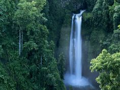 Samoa is a South Pacific paradise with lush forests and warm Polynesian culture. Photograph by Carsten Peter
