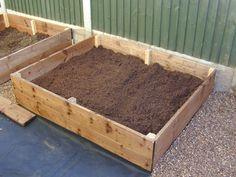 veggie patch Making Raised Beds, Raised Garden Beds, Easy Garden, Garden Ideas, Home And Garden, Veggie Patch, Square Foot Gardening, Gardening For Beginners, Growing Vegetables