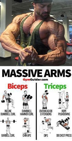 Learning how to get bigger arms is a matter of sculpting bigger, stronger biceps and triceps, it helps to arm yourself with a bit of knowledge about your muscles. Your upper arms are divided into 3 main muscle groups. To get your arms to grow, you need to Fitness Workouts, Weight Training Workouts, Gym Workout Tips, Lifting Workouts, Bodybuilding Training, Bodybuilding Workouts, Men's Bodybuilding, Bodybuilding Motivation, Big Biceps Workout