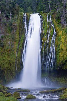 Lemolo Falls, Washington