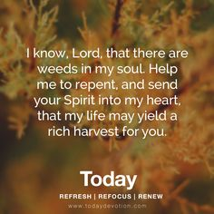 I know, Lord, that there are weeds in my soul. Help me to repent, and send your Spirit into my heart, that my life may yield a rich harvest for you.