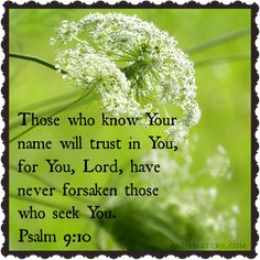 Psalm 9:10(NKJV) ~~ And those who know Your name will put their trust in You; for You, Lord, have not forsaken those who seek You.